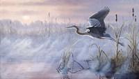 Rising Marsh Fine Art Print