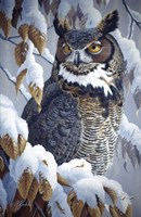 Winter Watch - Great Horned Owl Fine Art Print