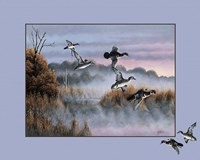 Ducks In Flight 2 Fine Art Print