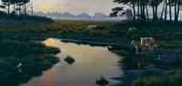 Assateague Sunset Fine Art Print