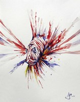 Pterois Fine Art Print