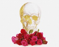 Rose And Skull Fine Art Print