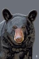 Black Bear 3 Fine Art Print