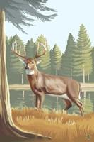 Elk 2 Fine Art Print