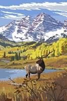 Elk 3 Fine Art Print