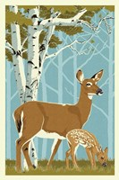 Deer with Fawn Fine Art Print