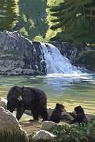 Black Bear with Cubs 3 Fine Art Print