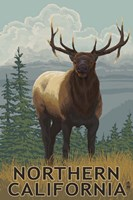 Northern California Fine Art Print