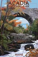 Acadia Fine Art Print