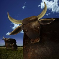 Year of the Ox Fine Art Print