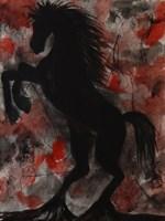 Black Stallion Fine Art Print