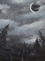 Starry Night over the Trees Fine Art Print