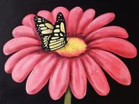 Butterfly's Snack Fine Art Print