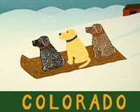 Colorado Sled Dogs Fine Art Print
