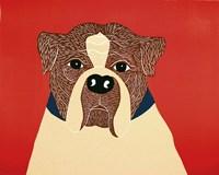 We Can Choose Boxer Fine Art Print