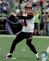 Andy Dalton 2015 Action Fine Art Print