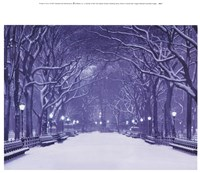 Winter In Central Park Fine Art Print