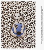 Caff-Fur-Ino Soccer Pup Framed Print