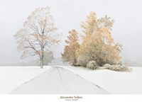 Autumn Snowfall Fine Art Print