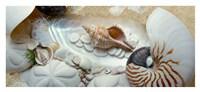 Island Tide Pool No. 1 Framed Print