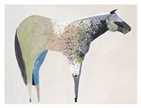 Horse No. 33 Framed Print