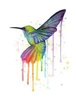 Rainbow Hummingbird Framed Print