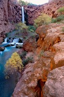 Havasu Falls, Grand Canyon National Park, Arizona Fine Art Print