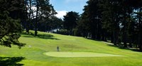 Player at Presidio Golf Course, San Francisco, California Fine Art Print