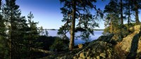 Lake Saimaa, Puumala, Finland Fine Art Print