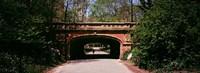 Footbridge in Central Park, Manhattan, New York City Fine Art Print