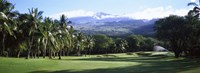 Makena Golf Course, Maui, Hawaii Fine Art Print