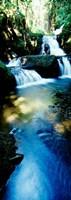 Waterfall in Hilo, HI Fine Art Print