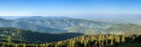 Hornisgrinde Mountain, Black Forest, Baden-Wurttemberg, Germany Fine Art Print