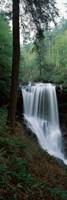 Dry Falls, Nantahala National Forest, Macon County, North Carolina Fine Art Print