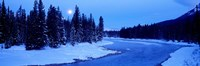 Moon Rising Above The Forest, Banff National Park, Alberta, Canada Fine Art Print