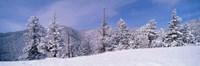 Snow Covered Landscape, Colorado Fine Art Print