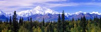 Denali National Park, Alaska Framed Print