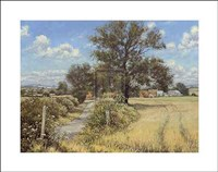 Summer Farm Fine Art Print
