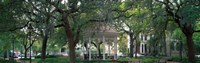 Whitefield Square Historic District, Savannah, GA Fine Art Print