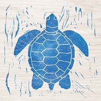 Sea Creature Turtle Blue Fine Art Print