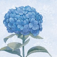 Blue Hydrangea III Crop Framed Print