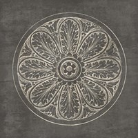 Rosette VIII Gray Fine Art Print