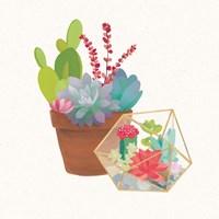 Succulent Garden II Fine Art Print