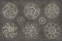 Rosette IX Gray Fine Art Print
