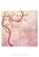 Sweet Cherry Blossoms V Framed Print