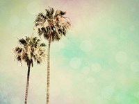 Palm Trees I Fine Art Print