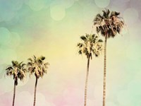 Palm Trees II Fine Art Print