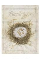 Nest - Bunting Framed Print
