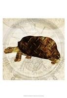 Steam Punk Turtle I Framed Print