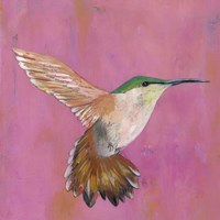 Sweet Hummingbird I Fine Art Print